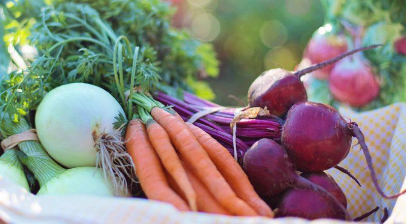 Zanahorias y cebollas